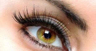 مدل آرایش چشم : آموزش گام به گام آرایش چشم برای عروس خانمها