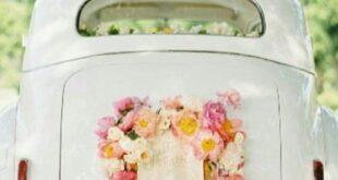 از اسب سفید تا ماشین عروس