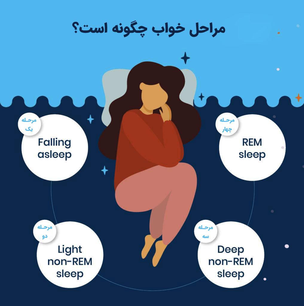 مراحل خواب چگونه است؟